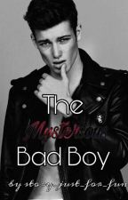 The Mysterious Bad Boy || *On Hold* by story_just_for_fun