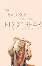 The Bad Boy Stole My Teddy Bear by LeleMontgomery