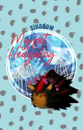 my pet hedgehog//sonadow by sinadow