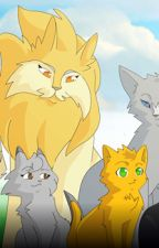 Warrior cats questions! by Raven-paw