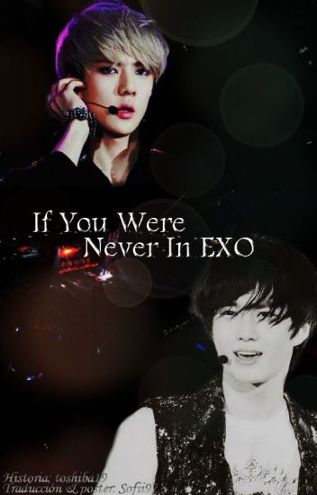 If You Were Never In EXO [SeHo -Traducción]