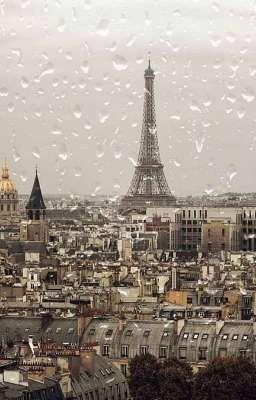 Đọc truyện ¦ joyrene ¦ °paris in the rain°