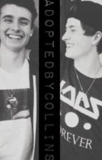 Adopted By Collins: A Chris & Crawford Collins Fanfic by thatch3rjo3