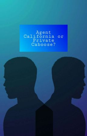 Agent California or Private Caboose (rvb) by Mor_Brown