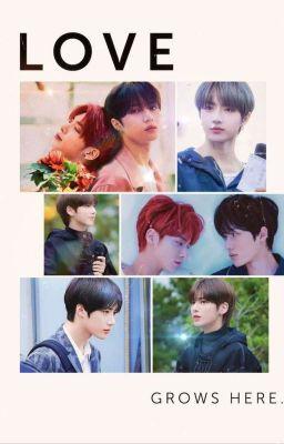 [TXT] [BeomHyun][YeonBin]Taehyun, Anh Yêu Em