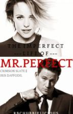 The imperfect life of Mr. Perfect [completed] by rbchubbielicious