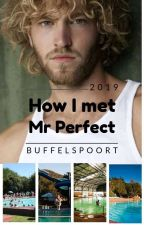 How I met Mr Perfect by miraeheart