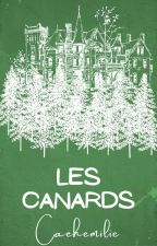 Les Canards by Aemilia42