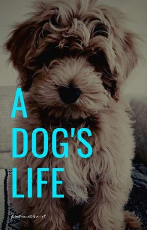 A dog's life  by ImProudOfLouisT