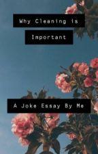 Why Cleaning is Important// A Joke Essay By Me by ik_ben_blij