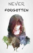 Never Forgotten (Levi X OC Fanfiction) by ViLeviivel