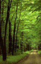 Το Δάσος του Αγάλματος by GeorgeKofinas