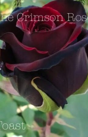 The Crimson Rose by Toast_Boi