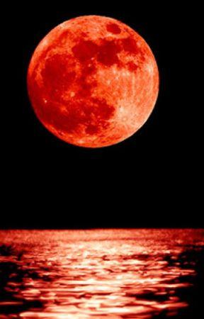 Luna Rossa. by niubba01