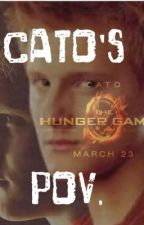 The Hunger Games Cato's pov. by ForeverMeLina