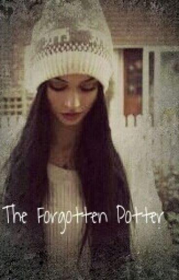 The Forgotten Potter