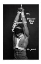 TNO: Pleasure Slave Arc by Blu_Koral