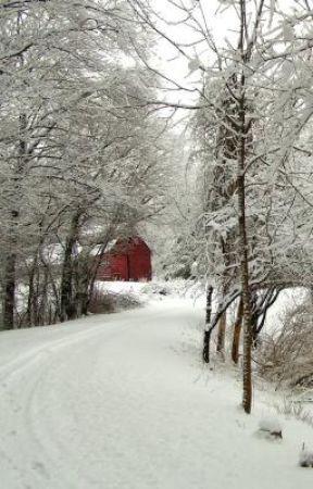 The Old Barn by xxalovemxx