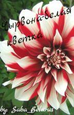 Чырвона-белая кветка by Saba_Belarus