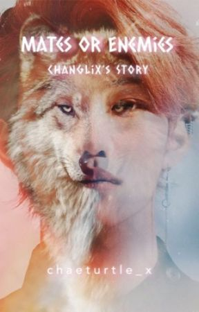 Mates or Enemies ✭ Changlix's Story by chaeturtle_x