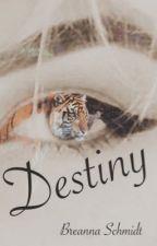 Destiny by bschmidtie