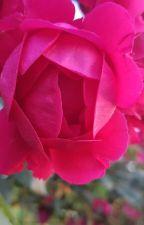 La bellezza delle brutte cose by Moon_Rose96