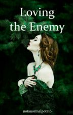 Loving the Enemy by notanormalpotato