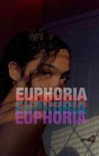 euphoria¡ » fezco by everydayhoney