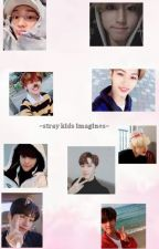 ~stray kids imagines~ by mia100202