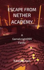 Escape from Nether Academy (A Gameknight999 Fanfiction) by AronKawaii666