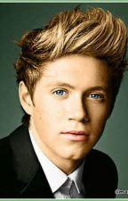 Pídeme lo que quieras (Niall Horan & _____) Hot by nena1111