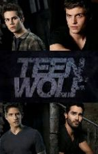 teen wolf preferences and imagines by lydiahale_