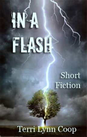 In a Flash by TerriCoop