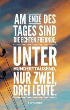 Echte Freunde  (SDP FF) by SelinaLanger