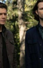 When the Denis's Meet the Winchesters by werewolf123462