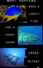 The Story of Fishy🐠 and Gilda🦈 by Sterek_Shipper_27