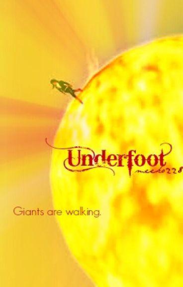 Underfoot by meeko228