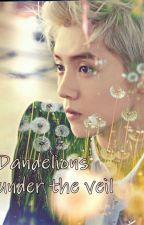 Dandelions under the veil ( an EXO fanfic - Luhan) by xoxoluhoney