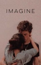 Imagine ⟶ shawmila  by WhyAlltheseyears