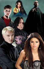 Harry Potter et la princesse des ténèbres. by AuroreDixon