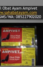 WA O85-227-9O2O2O  Obat Pilek Ayam Bangkok Paling Ampuh Padang by tokoperlengkapanayam