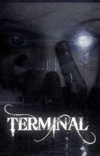 TERMINAL by Vivirlocamente