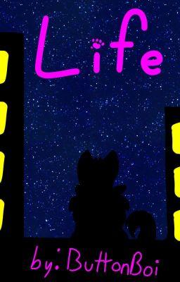kitten Stories - Wattpad