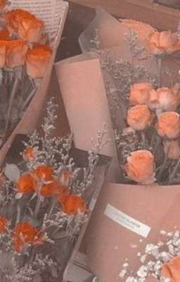 Đọc truyện 2young ° hoa hồng màu hồng
