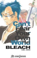 Bleach: Can't Fear Your Own World (English Translation) by uselessflame