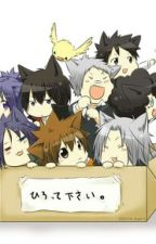 Box of kittens by TheaRewindsDestiny