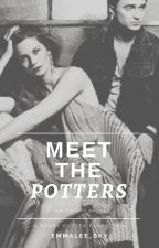 Meet the Potters [Potters Series: 1.5] by Emmalee_Sky