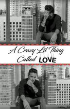 A Crazy Lil Thing Called LOVE    Liam Payne by namy_1d