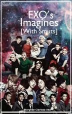 EXO Imagines [WITH SMUTS][REQUEST CLOSED] by ClarissaIma