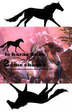 le haras de la 2éme chance by Galopa32